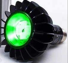 The Peak 516™ LED Green Light Therapy for Rosacea