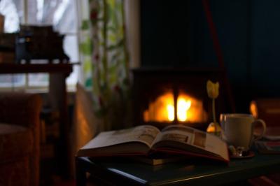 Fireplace Rosacea Heat Trigger  |  Rosy JulieBC